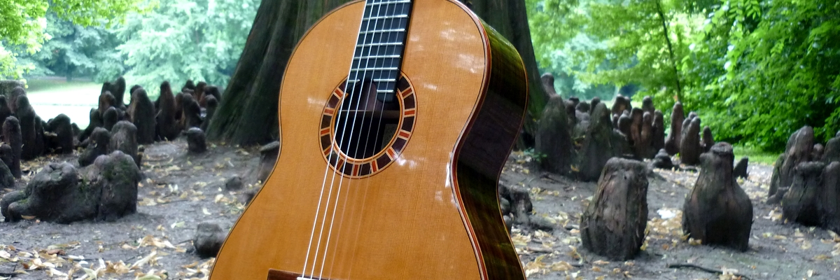 concert classical guitars