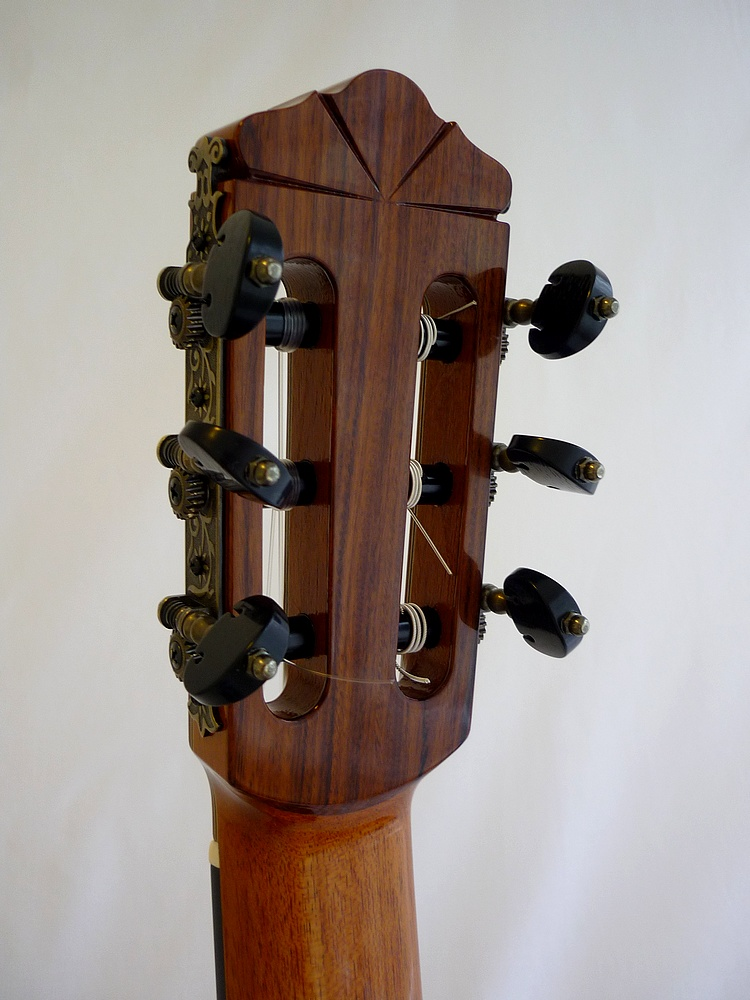 elevated lattice classical guitar